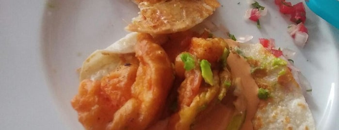 La Tuga Seafood And More is one of Locais curtidos por Eduardo.