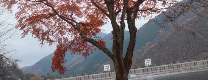 Lake Okutama is one of Lugares favoritos de Yutaka.
