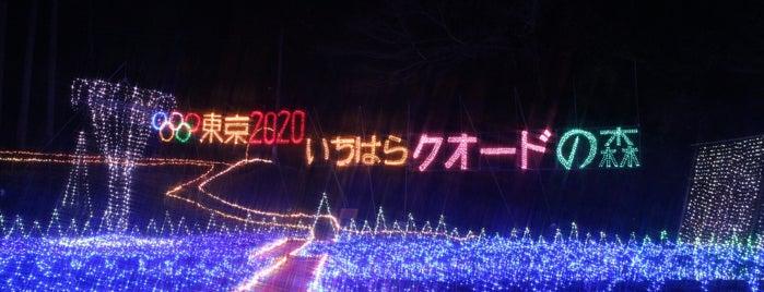 市原市民の森 is one of Lugares favoritos de Yutaka.