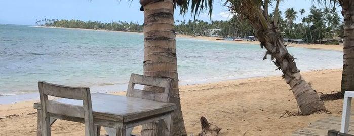 Resort Costa Las Ballenas is one of Tempat yang Disukai John.