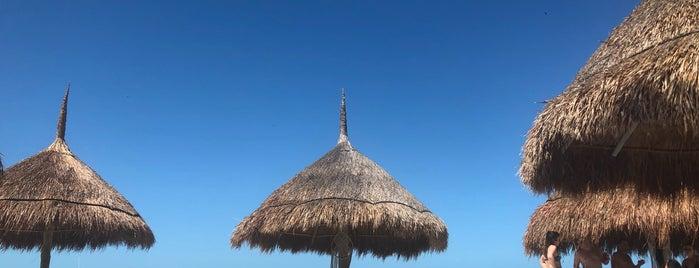 Casa Las Tortugas is one of Mallory : понравившиеся места.