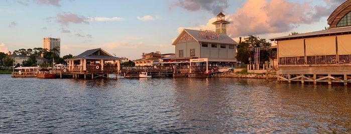 The Landing Boat Dock is one of Disney Springs.