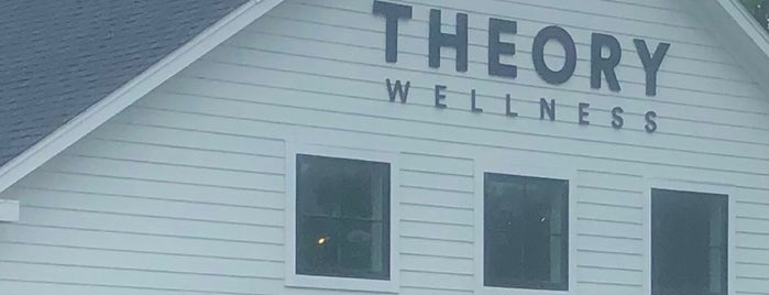 Theory Wellness is one of Berkshires.
