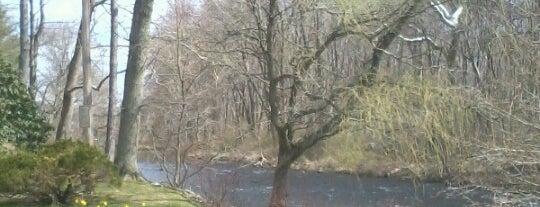Mill River is one of Orte, die Chad gefallen.