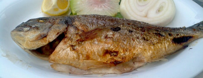 Deniz Gülü Balık Restaurant (Doktor Hanımın Yeri ) is one of Adres.