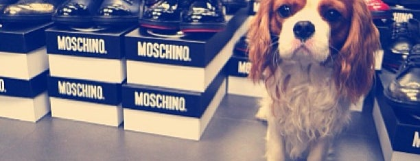 Moschino is one of Likeee....