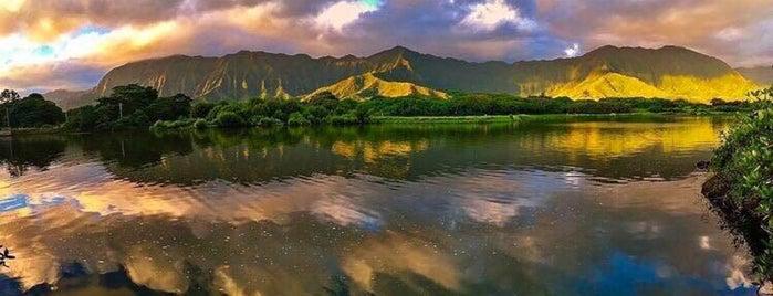Secret Island is one of Lugares favoritos de Jesennia.