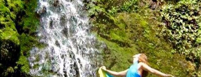 Lulumahu Falls is one of Lugares favoritos de Jesennia.