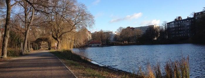 Lietzenseepark is one of Grün und Blau Berlin.