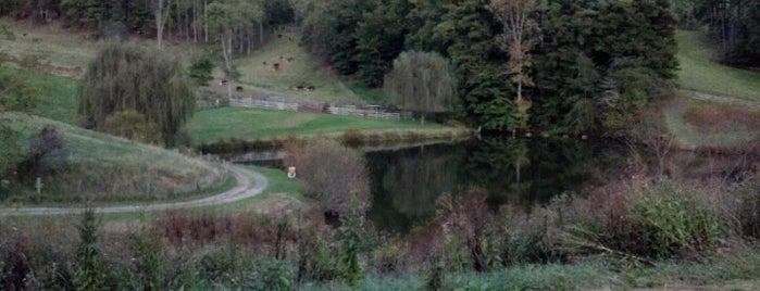 Claxton Farm is one of Orte, die Julian gefallen.