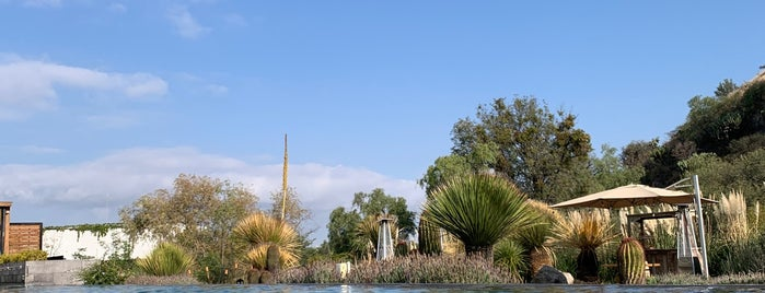 Live Aqua San Miguel De Allende is one of Lugares favoritos de Jhalyv.