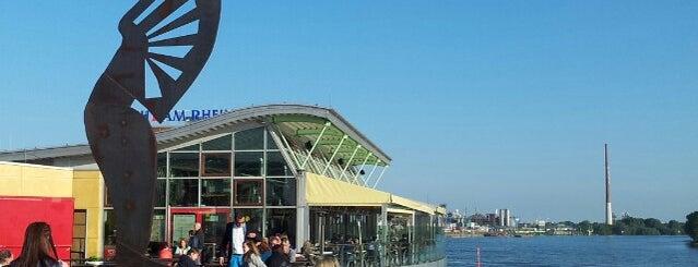 Wacht am Rhein is one of Orte, die Anders gefallen.