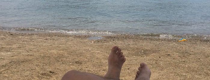 Haylaz Beach is one of Levent : понравившиеся места.