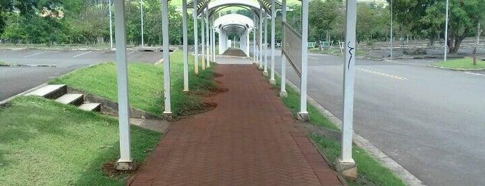 Bolsão de Estacionamento is one of Puc Campinas.