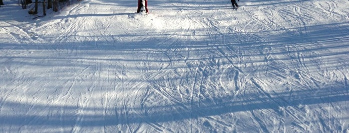 Mohawk Ski Area is one of Ski Bum.