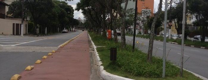 Pista de Caminhada e Corrida is one of Tempat yang Disukai Kleber.
