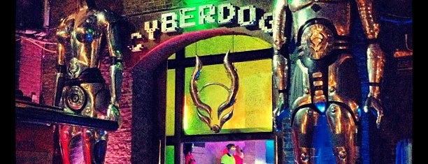 Cyberdog is one of London.