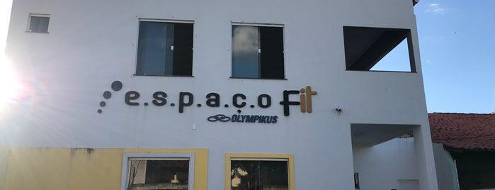 Espaço FIT is one of Locais curtidos por Aline.