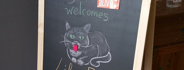 Austin Pets Alive! Cattery Locations