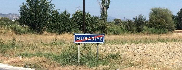 Muradiye Köprübaşı is one of Lieux qui ont plu à Mesut.