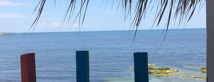 Roca Beach is one of Lieux qui ont plu à Matei.
