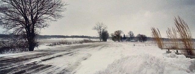 Three Oaks, MI is one of Michigan Places.