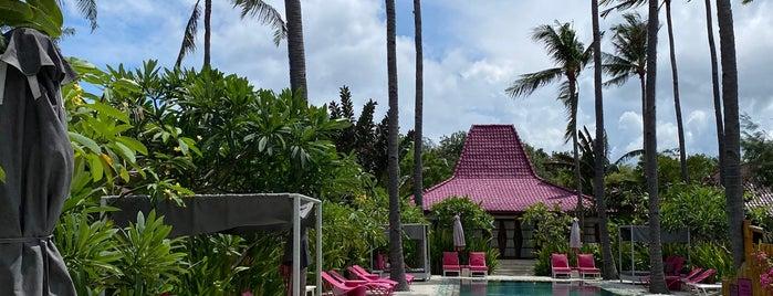 PinkCoco is one of Bali 2.0.