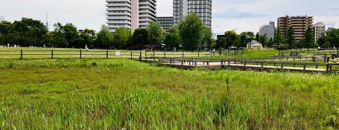 Ogunohara Park is one of Masahiro'nun Beğendiği Mekanlar.