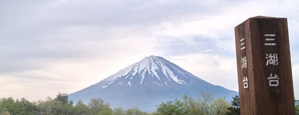 Aokigahara Forest is one of World Ancient Aliens.