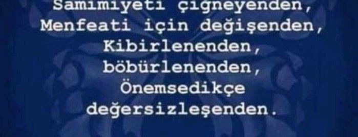 Camlıkahve is one of Alyans.