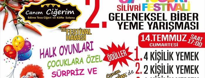 Canım Ciğerim is one of สถานที่ที่ Kenan ถูกใจ.
