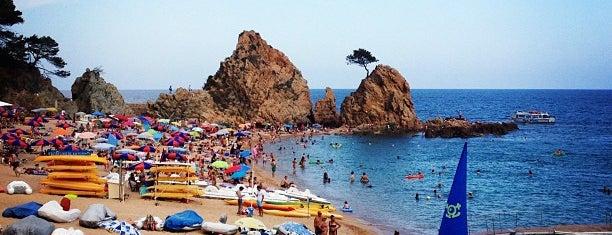 Platja de Mar Menuda is one of Andrey : понравившиеся места.