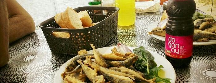 Meral Balıkçılık Restaurantı is one of Tuğrulさんの保存済みスポット.