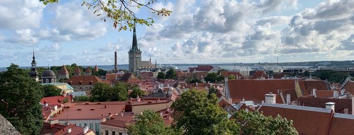 Toomkiriku vaateplatvorm is one of Posti che sono piaciuti a Stanislav.