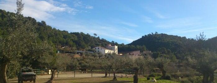 Masia de Matuta is one of Spain.