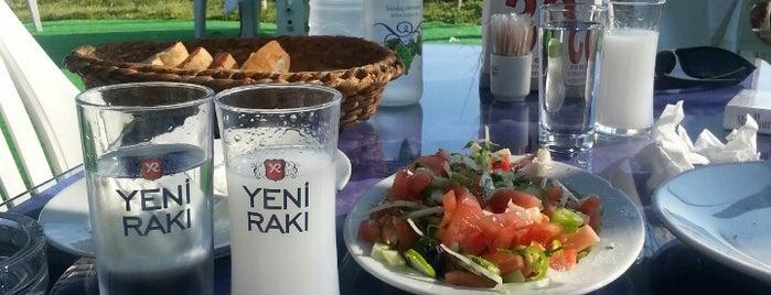 Yıldız Restaurant is one of Lieux qui ont plu à Tekin.