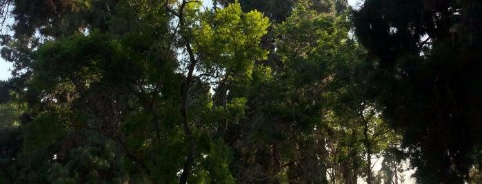 El Dorado Park is one of Posti che sono piaciuti a Michael.