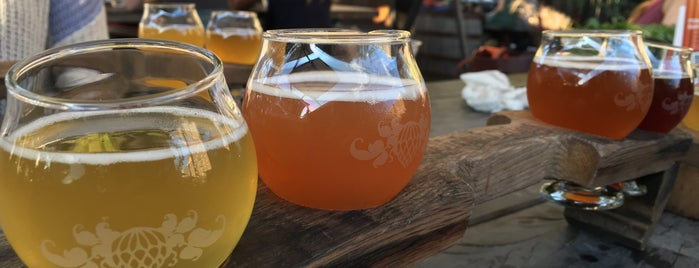 Funkatorium is one of NC Craft Breweries.