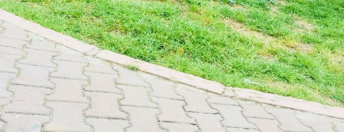 Uçgen park is one of Orte, die Yunus gefallen.