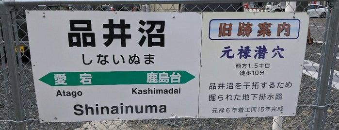 Shinainuma Station is one of JR 미나미토호쿠지방역 (JR 南東北地方の駅).
