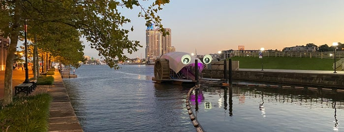 The Inner Harbor Water Wheel (Mr. Trash Wheel) is one of Baltimore, MD.