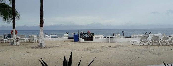 Viña Del Mar is one of Orte, die Karla gefallen.