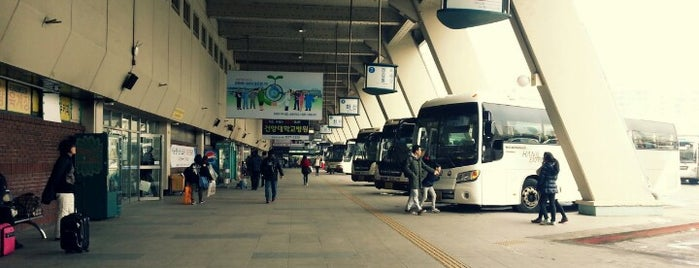 Seoul Express Bus Terminal is one of 동해.