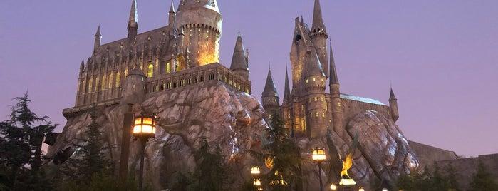 Harry Potter and the Forbidden Journey is one of Locais curtidos por Cristina.