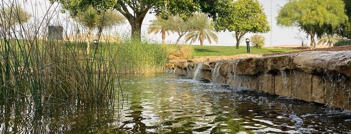 مركز الرحمانية الثقافي is one of Anoud 님이 좋아한 장소.