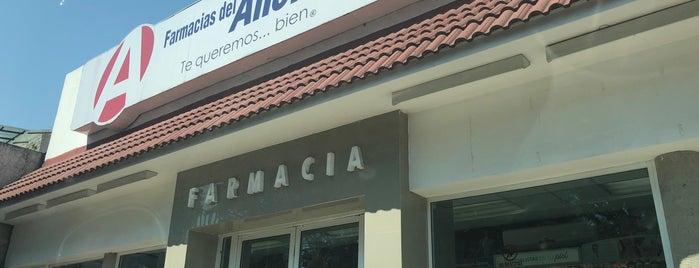 Farmacias del Ahorro is one of Stephania : понравившиеся места.
