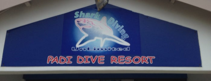 Shark Diving Unlimited is one of The Garden Route.