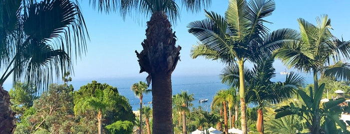 Mediterranean Beach Hotel is one of Orte, die Veronika gefallen.