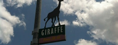 Giraffe Parking Lot is one of Transportation & Misc Disney World Venues.