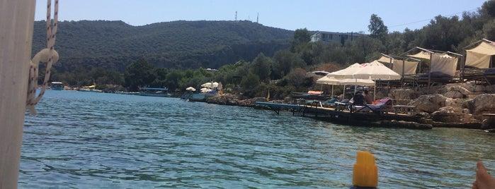 Bilal'in Yeri is one of Lugares favoritos de Selin.